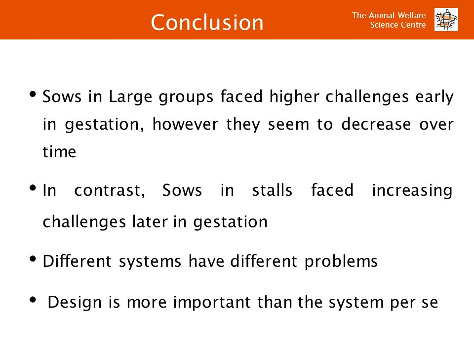 The Animal Welfare Science Centre Conclusion Sows in Large groups faced higher challenges early in gestation, however they seem to decrease over time