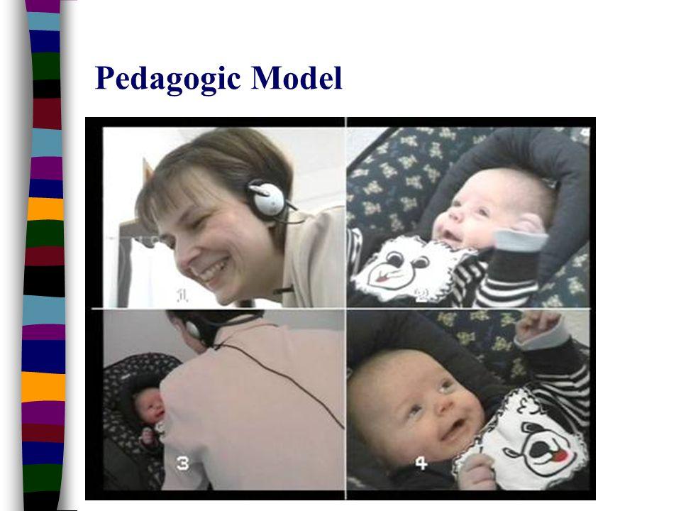 Shanti Raman Pedagogic Model