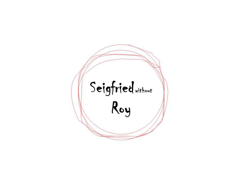 Seigfried without Roy