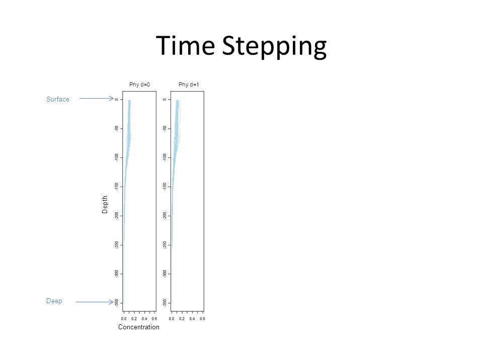 Time Stepping Concentration Depth Phy d=0 Phy d=1 Surface Deep