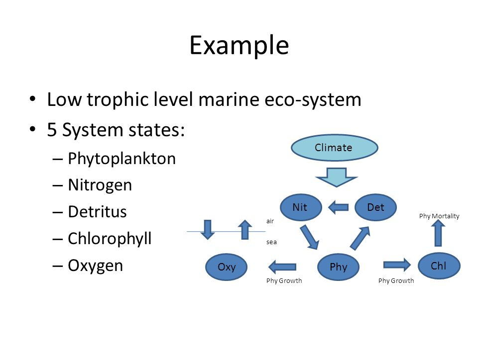 Example Low trophic level marine eco-system 5 System states: – Phytoplankton – Nitrogen – Detritus – Chlorophyll – Oxygen Det Phy Nit Chl Oxy Phy Growth air sea Phy Mortality Climate