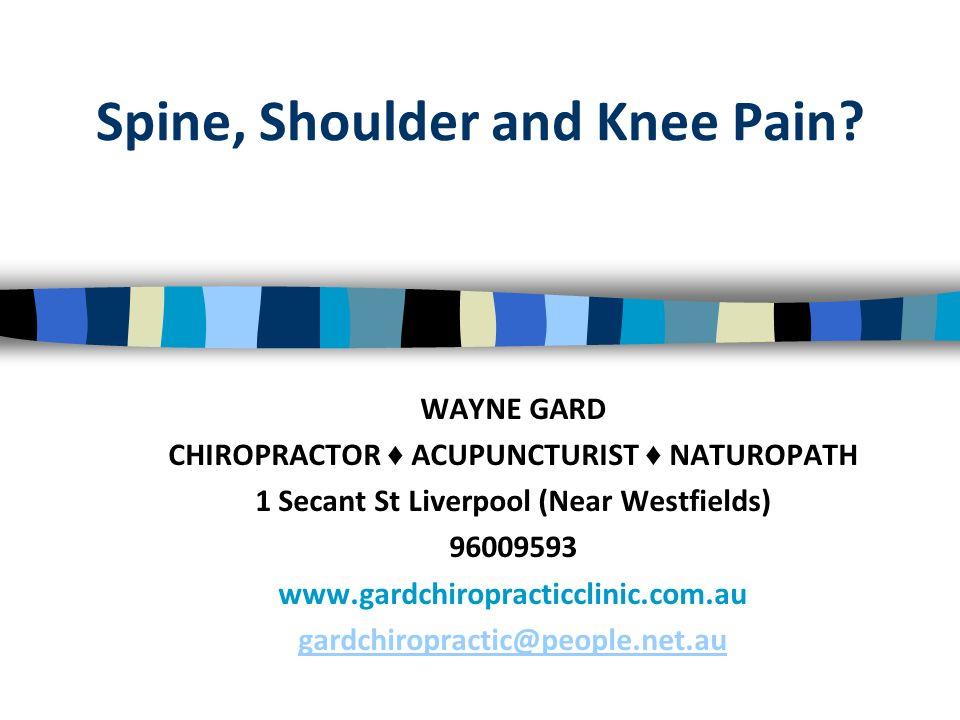 Spine, Shoulder and Knee Pain? WAYNE GARD CHIROPRACTOR ACUPUNCTURIST NATUROPATH 1 Secant St Liverpool (Near Westfields) 96009593 www.gardchiropracticc