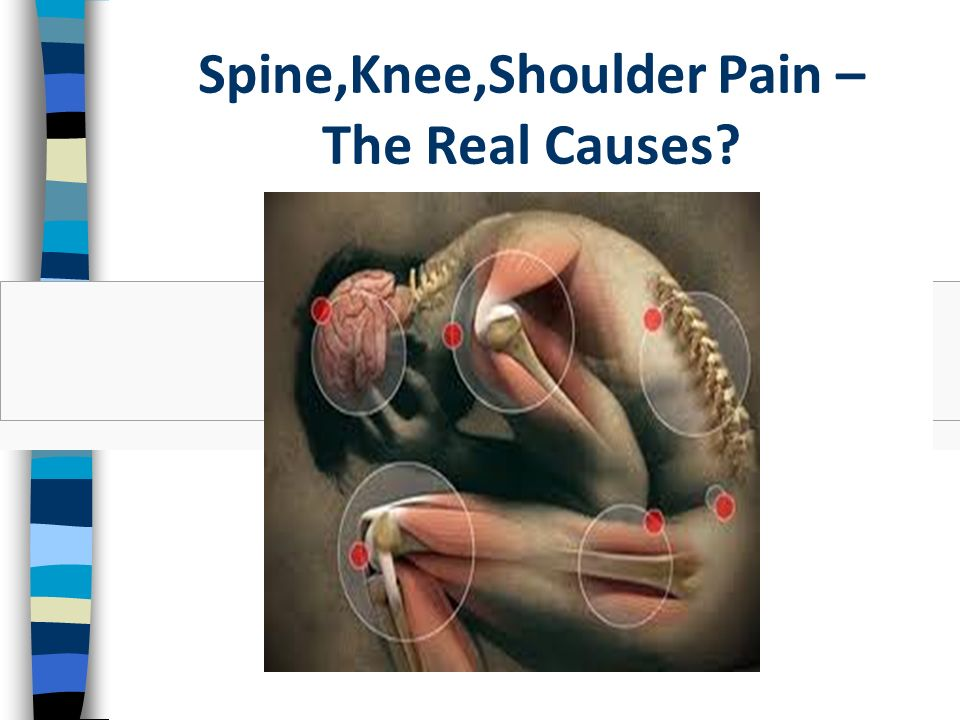 Spine,Knee,Shoulder Pain – The Real Causes?