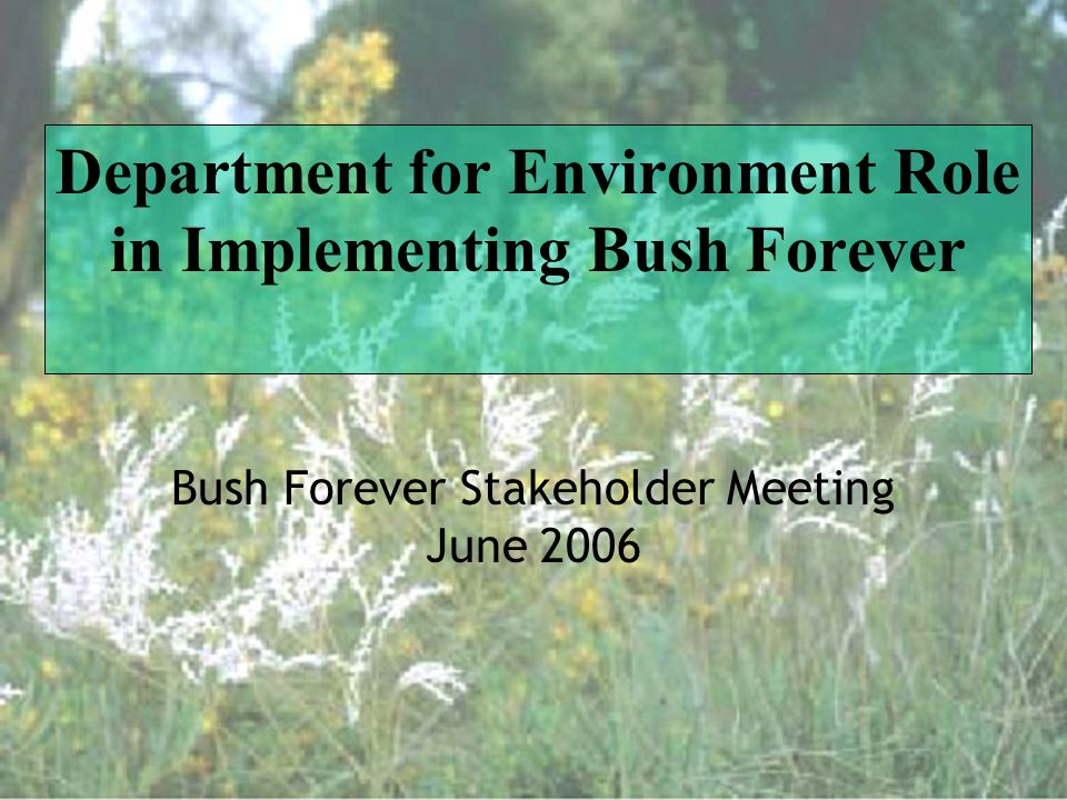 Department for Environment Role in Implementing Bush Forever Bush Forever Stakeholder Meeting June 2006