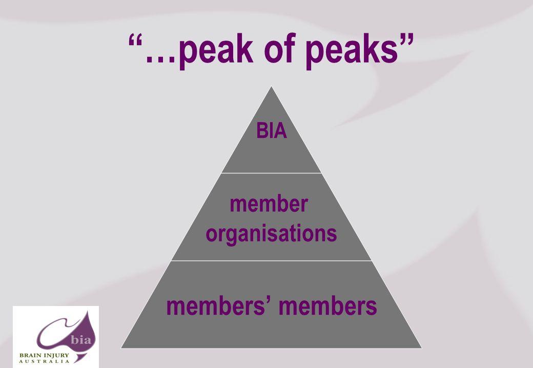 …peak of peaks BIA member organisations members