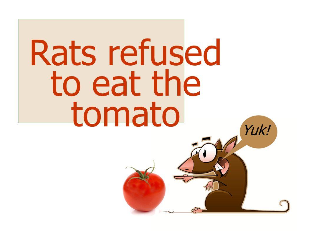 Yuk! Rats refused to eat the tomato