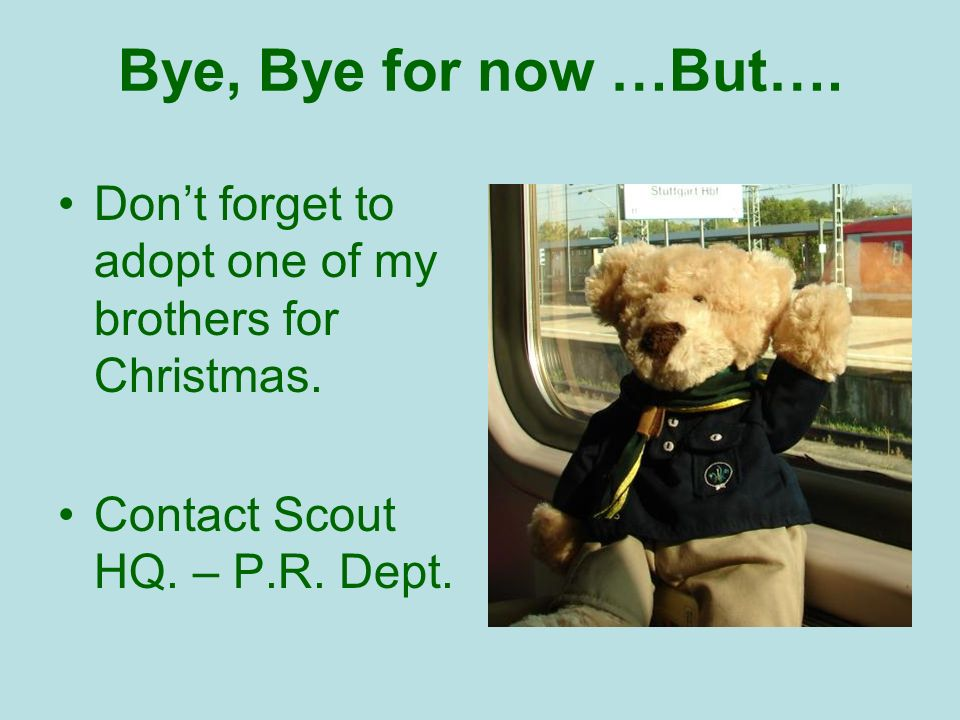 Bye, Bye for now …But…. Dont forget to adopt one of my brothers for Christmas.