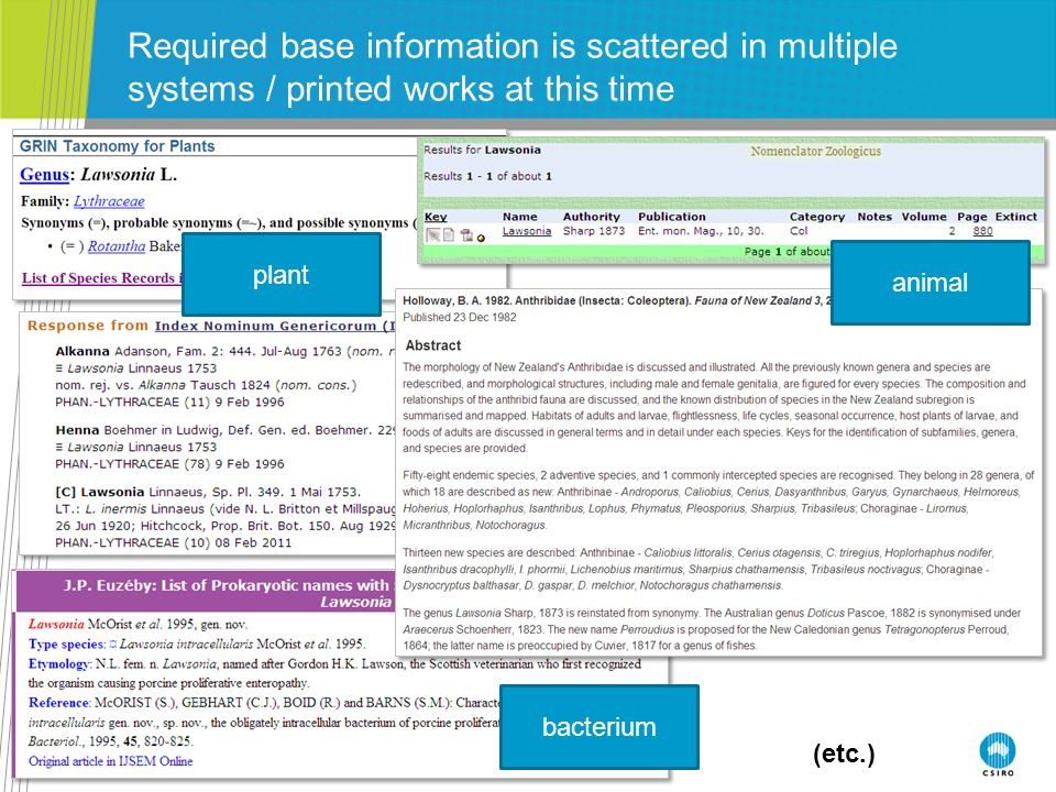 Tony Rees: IRMNG March 2012 Required base information is scattered in multiple systems / printed works at this time (etc.) plant animal bacterium