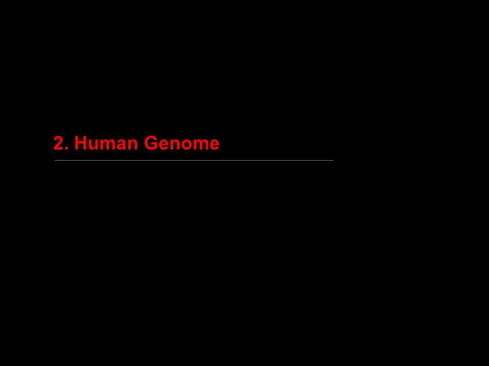Genotypic similarity between relatives - 2 2n ABC D