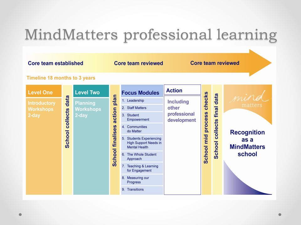 MindMatters professional learning