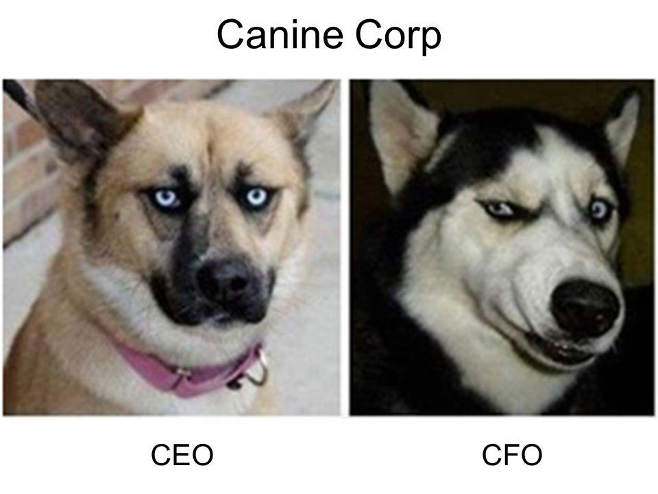 Canine Corp CEO CFO