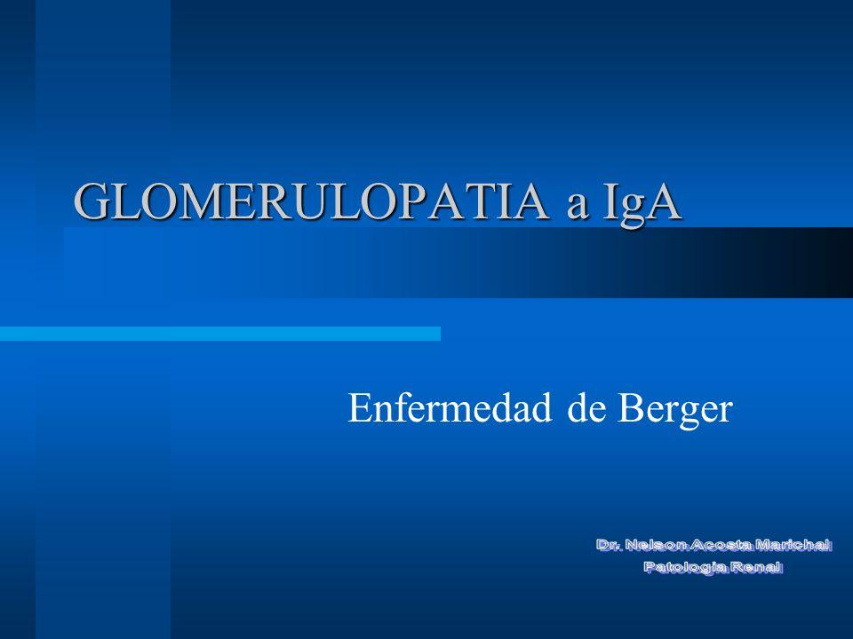 Definición: I NMUNOHISTOPATOLOGICA Depósitos glomerulares dominantes o co-dominantes de IgA.