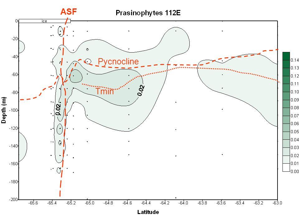 ASF Tmin Pycnocline