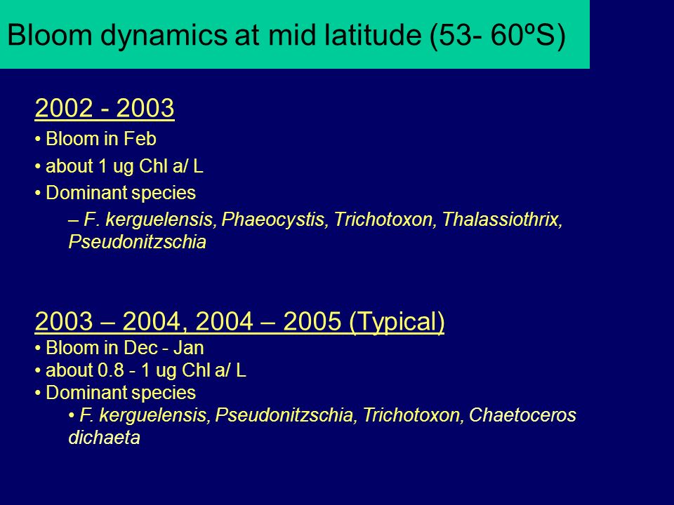 Bloom dynamics at mid latitude (53- 60ºS) 2002 - 2003 Bloom in Feb about 1 ug Chl a/ L Dominant species – F.