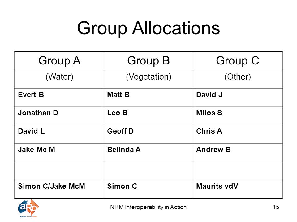 NRM Interoperability in Action15 Group Allocations Group AGroup BGroup C (Water)(Vegetation)(Other) Evert BMatt BDavid J Jonathan DLeo BMilos S David