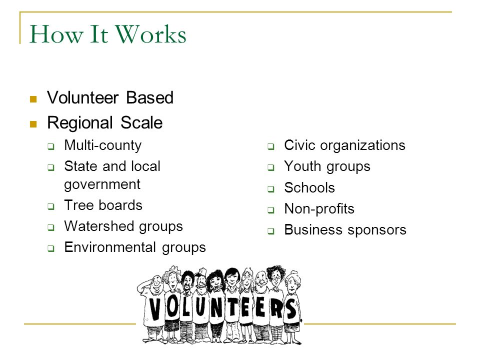How It Works Volunteer Based Regional Scale Multi-county State and local government Tree boards Watershed groups Environmental groups Civic organizations Youth groups Schools Non-profits Business sponsors