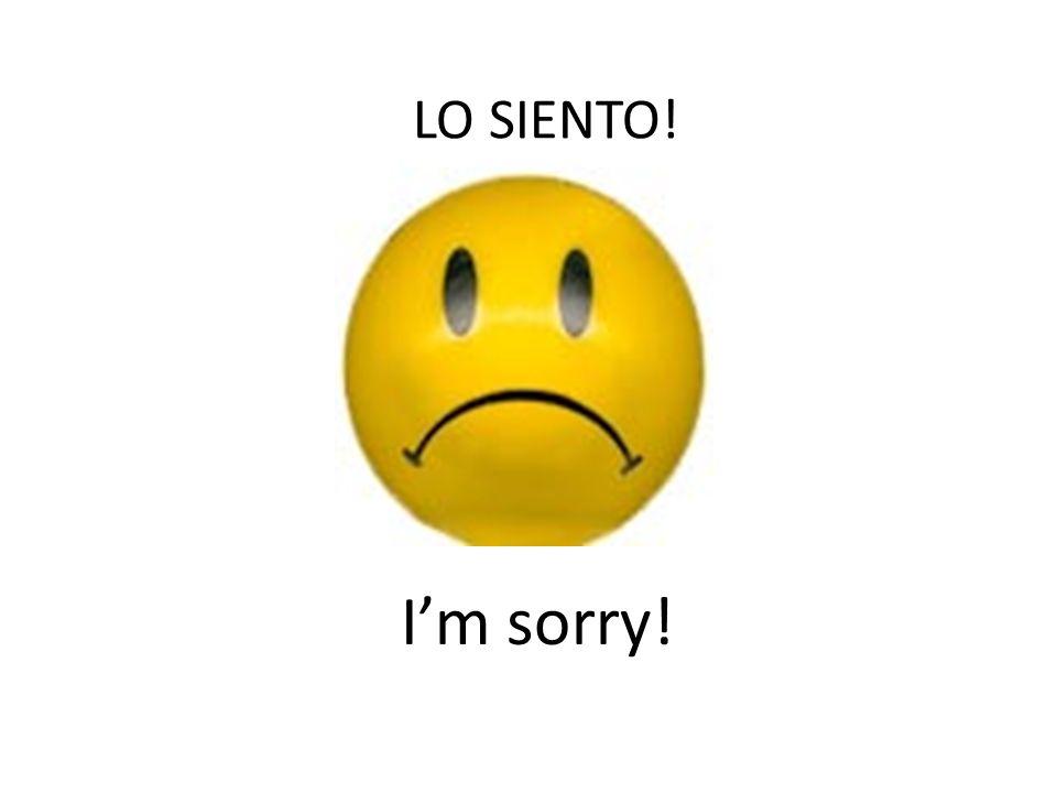 LO SIENTO! Im sorry!