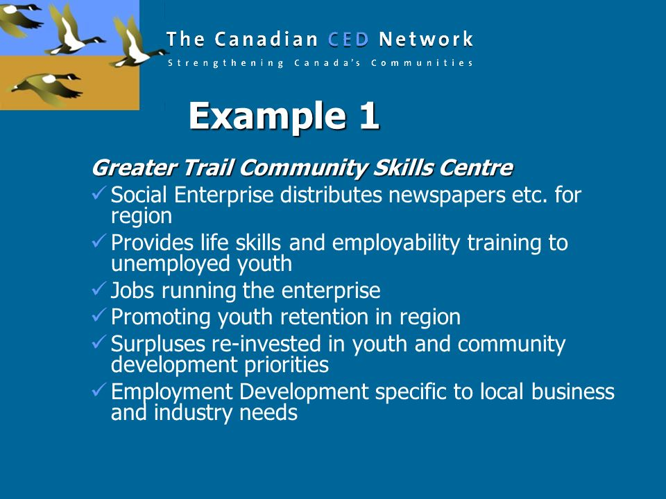 Example 1 Greater Trail Community Skills Centre Social Enterprise distributes newspapers etc. for region Provides life skills and employability traini