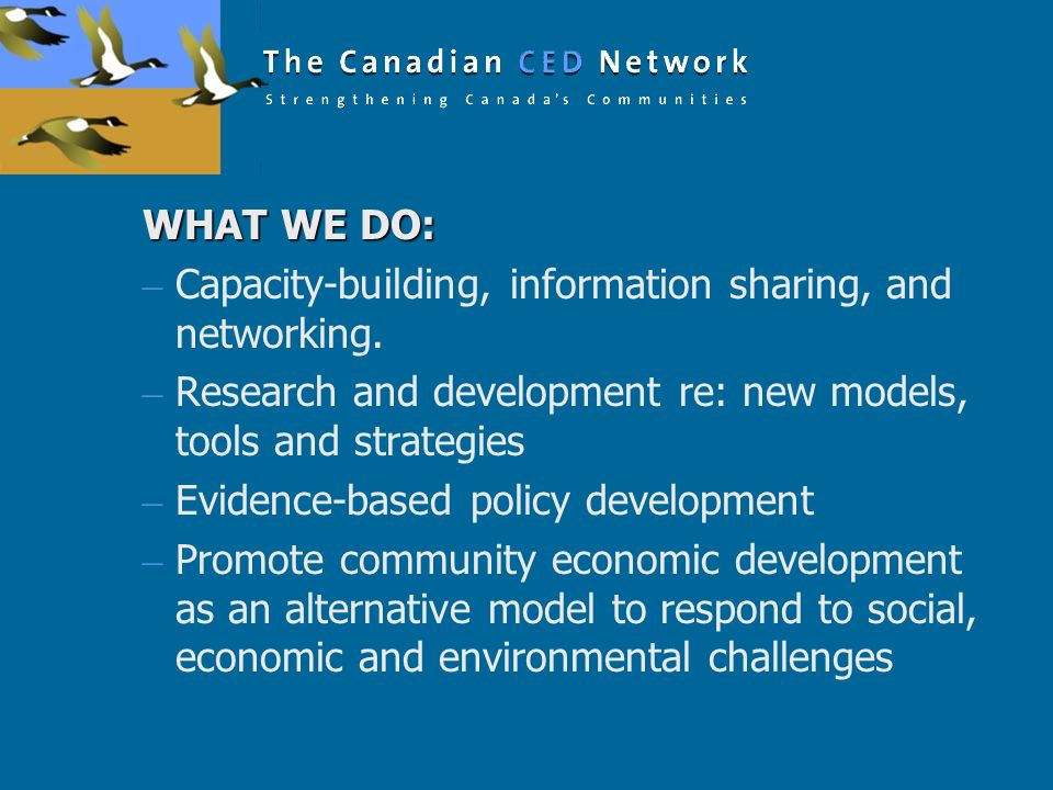 WHAT WE DO: – Capacity-building, information sharing, and networking. – Research and development re: new models, tools and strategies – Evidence-based