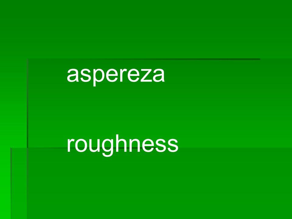 aspereza roughness