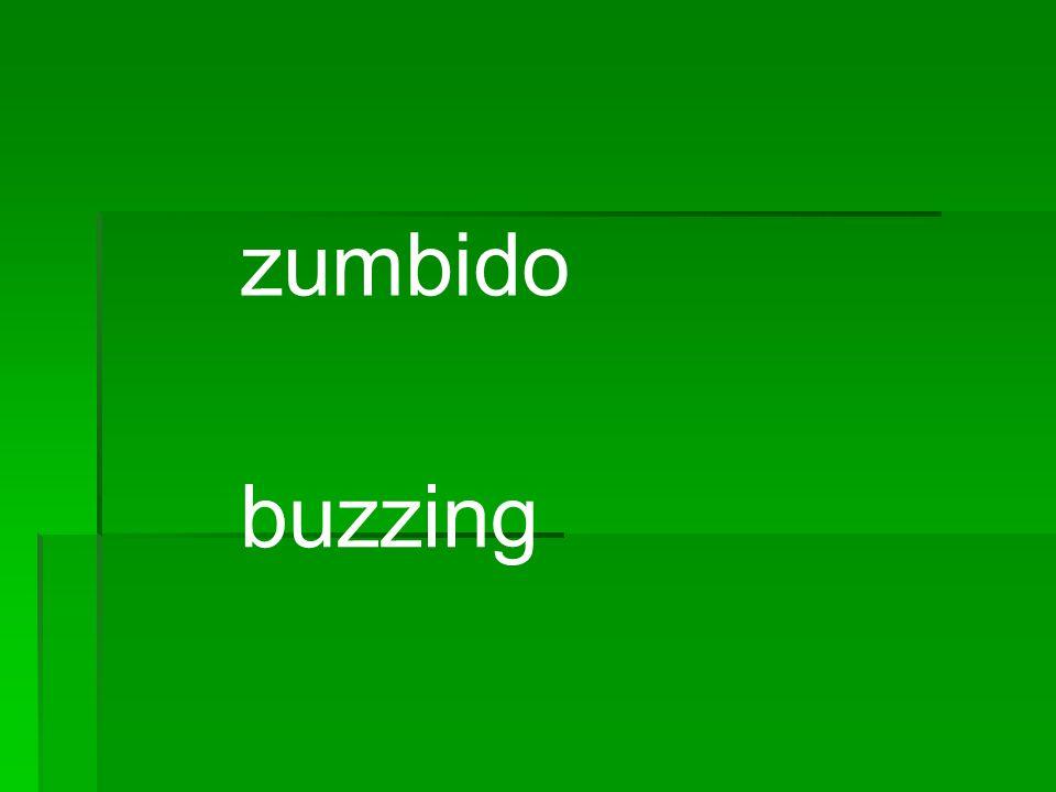 zumbido buzzing