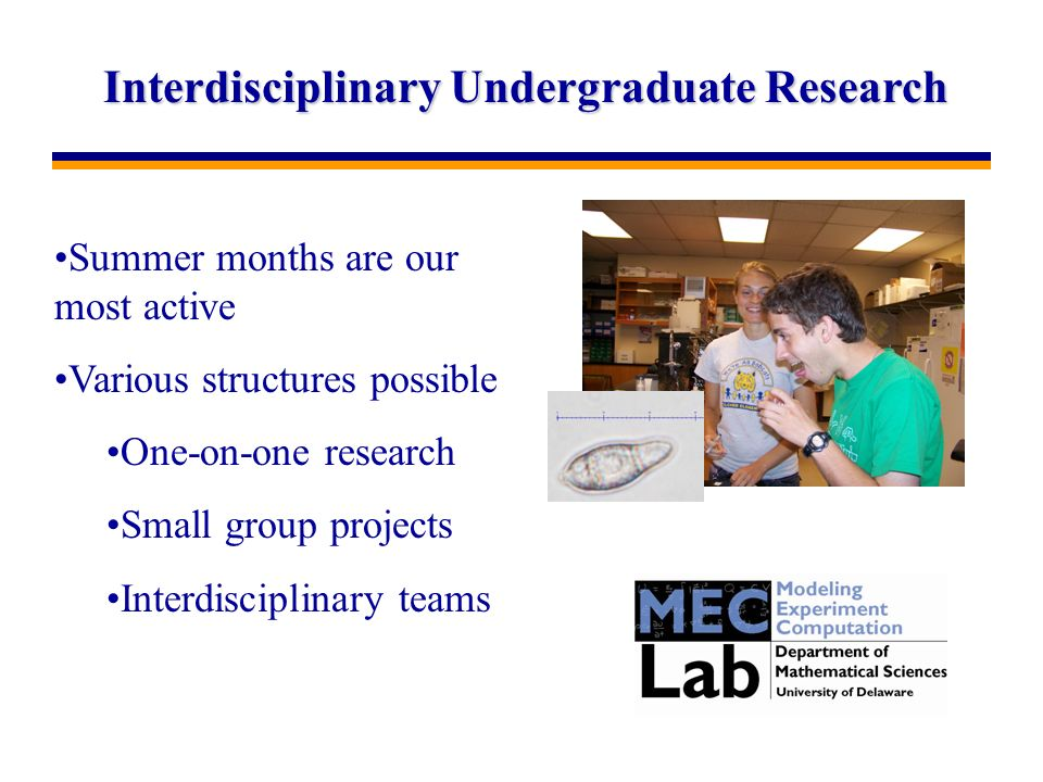 Interdisciplinary Undergraduate Research Summer months are our most active Various structures possible One-on-one research Small group projects Interdisciplinary teams