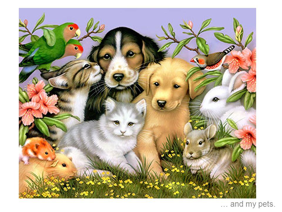 y mis mascotas.
