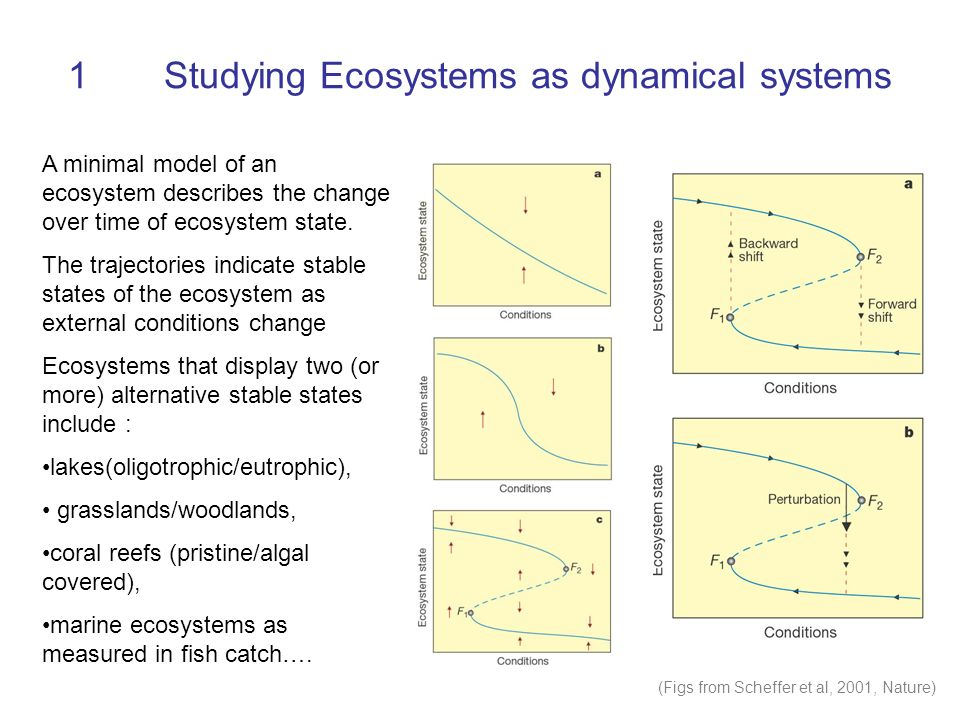 1Studying Ecosystems as dynamical systems A minimal model of an ecosystem describes the change over time of ecosystem state. The trajectories indicate