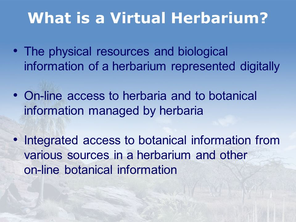 Summary Australias Virtual Herbarium: A collaborative national project Making botanical information available Using modern technology Using cheap readily available components A model for regional and global cooperation