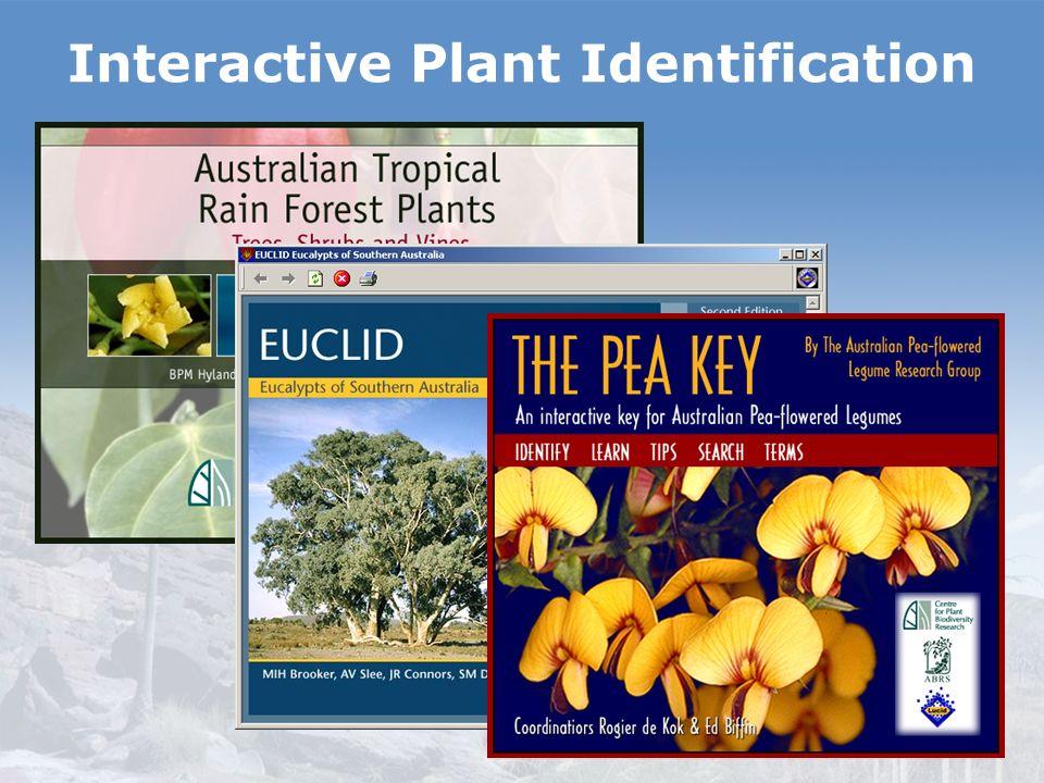 Interactive Plant Identification