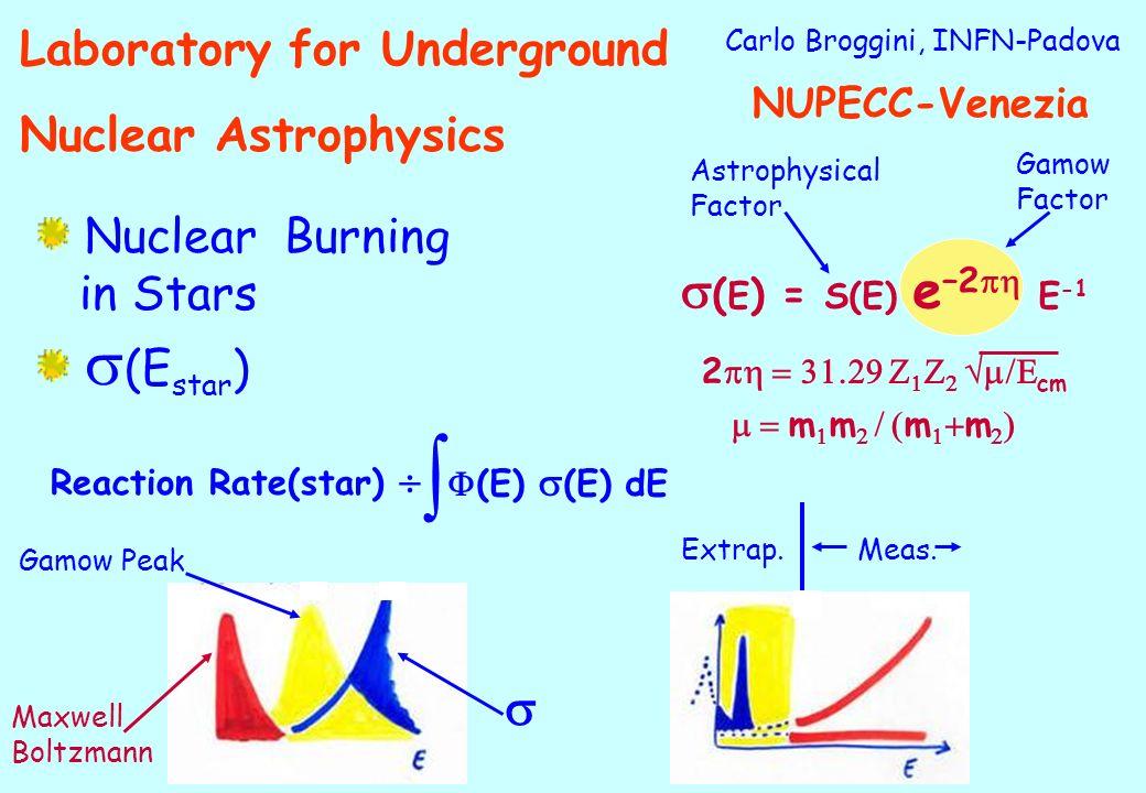 Carlo Broggini, INFN-Padova Nuclear Burning in Stars (E star ) ( E ) = S(E) e –2 E -1 2 cm m m m m Astrophysical Factor Gamow Factor Reaction Rate(sta