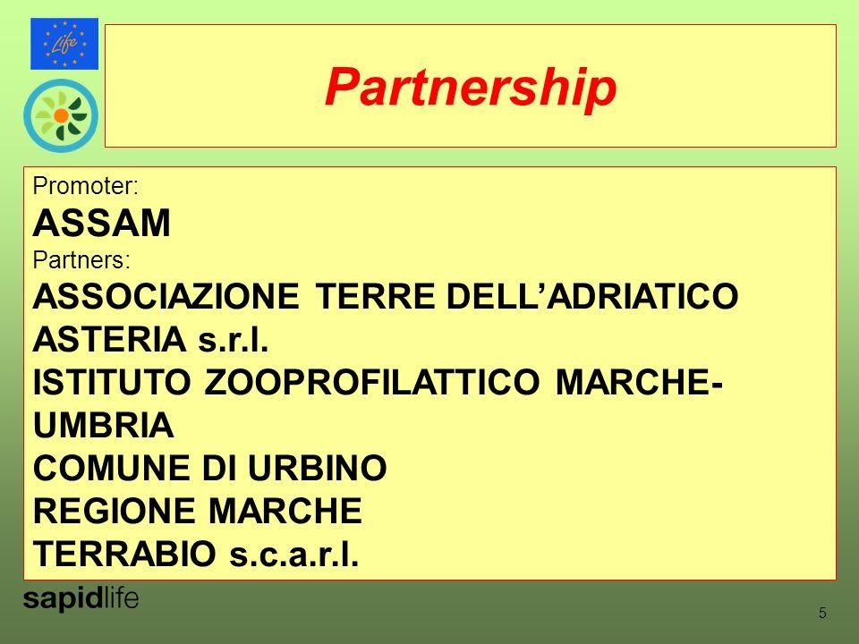 Promoter: ASSAM Partners: ASSOCIAZIONE TERRE DELLADRIATICO ASTERIA s.r.l.