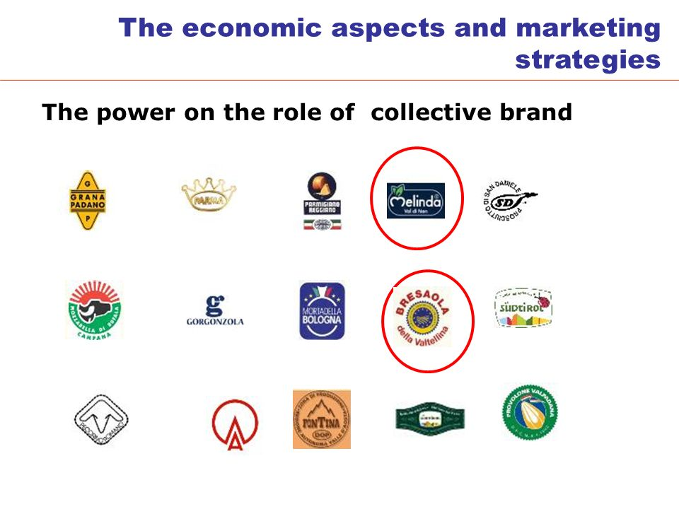 The power on the role of collective brand The economic aspects and marketing strategies