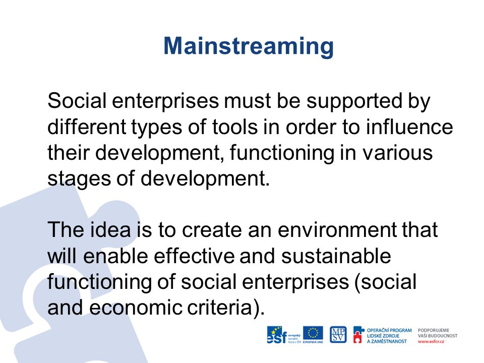 Mainstreaming Social enterprises must be supported by different types of tools in order to influence their development, functioning in various stages of development.