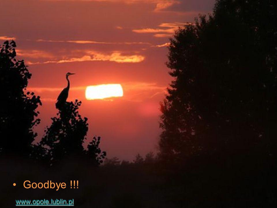Goodbye !!. w ww w wwww wwww.... oooo pppp oooo llll eeee....