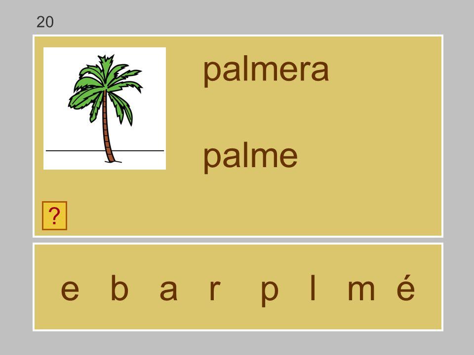 e b a r p l m é palmera ? palm 20
