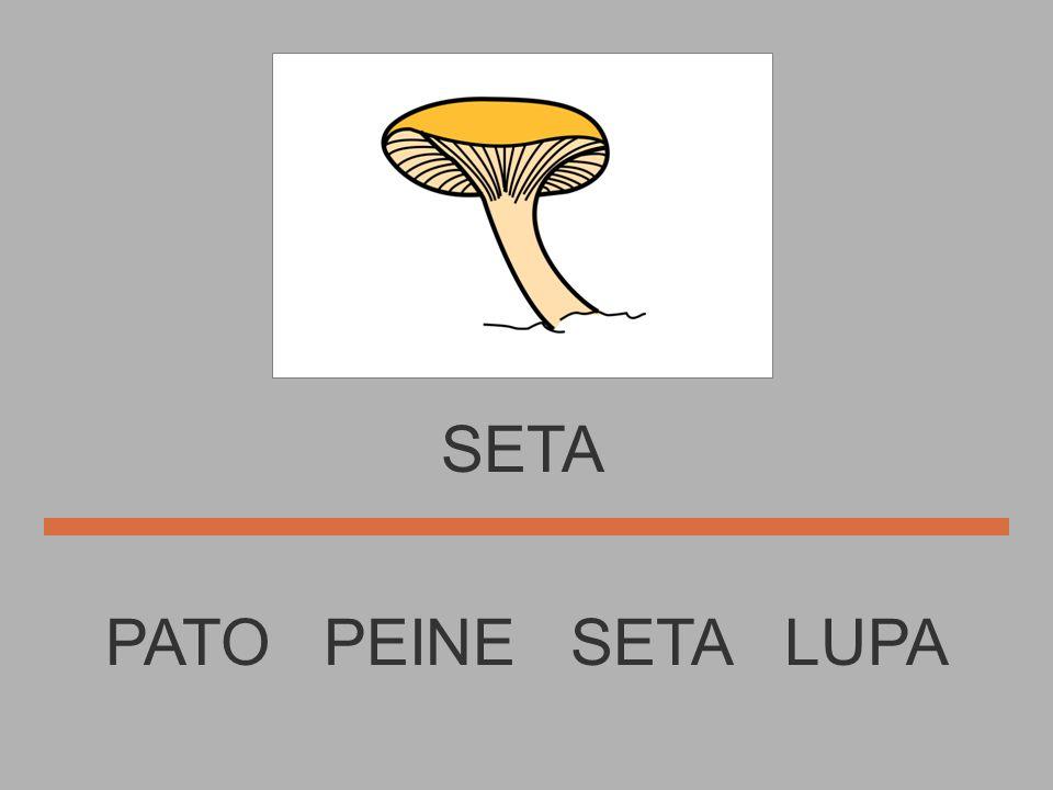 LUPA E T S L A SETA S..........