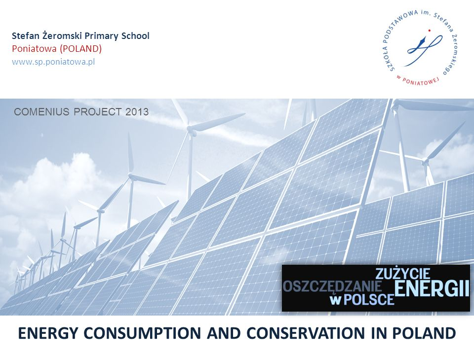 The structure of final energy consumption in Poland by energy carrier ENERGY EFFICIENCY IN POLAND YEARS 2000-2010 data publikacji: 2013-07-29, źródło: http://www.stat.gov.pl ENERGY CONSUMPTION IN POLAND