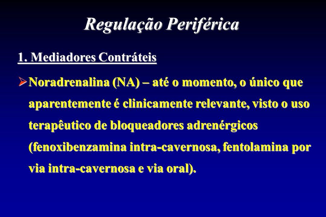 Regulação Periférica 1. Mediadores Contráteis Noradrenalina (NA) – até o momento, o único que aparentemente é clinicamente relevante, visto o uso tera