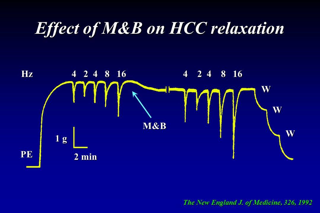Effect of M&B on HCC relaxation 4 2 4 8 16 4 2 4 8 16 W W W 1 g 2 min Hz PE M&B The New England J. of Medicine, 326, 1992
