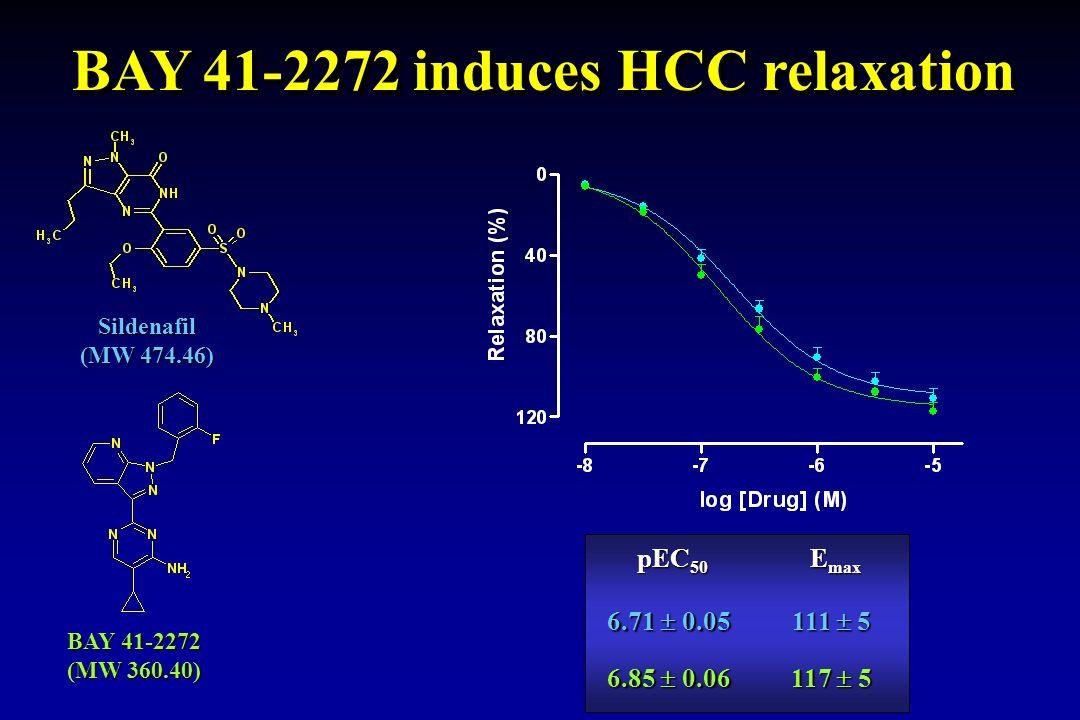 pEC 50 E max 6.71 0.05 111 5 6.85 0.06 117 5 Sildenafil (MW 474.46) BAY 41-2272 (MW 360.40) BAY 41-2272 induces HCC relaxation