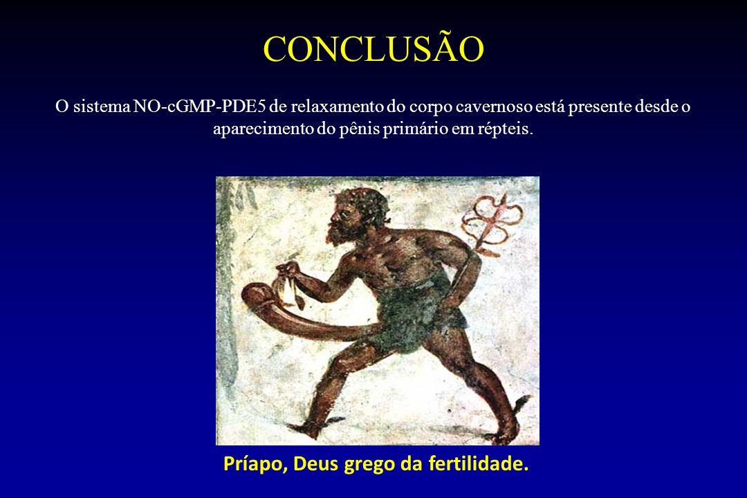 CONCLUSÃO O sistema NO-cGMP-PDE5 de relaxamento do corpo cavernoso está presente desde o aparecimento do pênis primário em répteis. Príapo, Deus grego