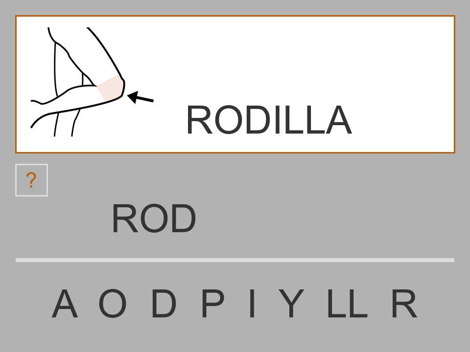 RO A O D P I Y LL R ? RODILLA
