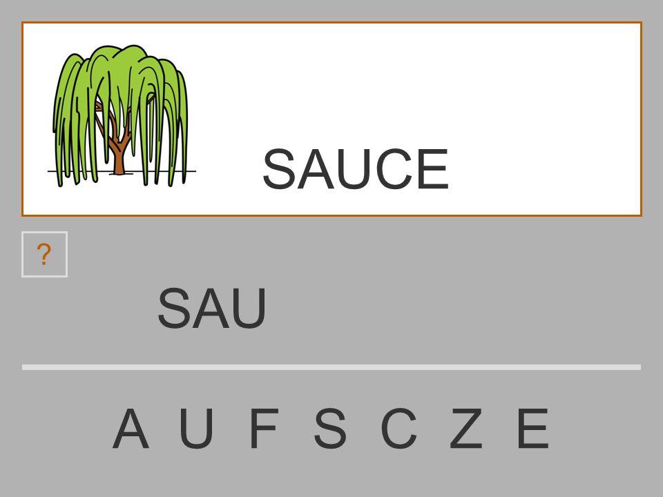 SA A U F S C Z E ? SAUCE