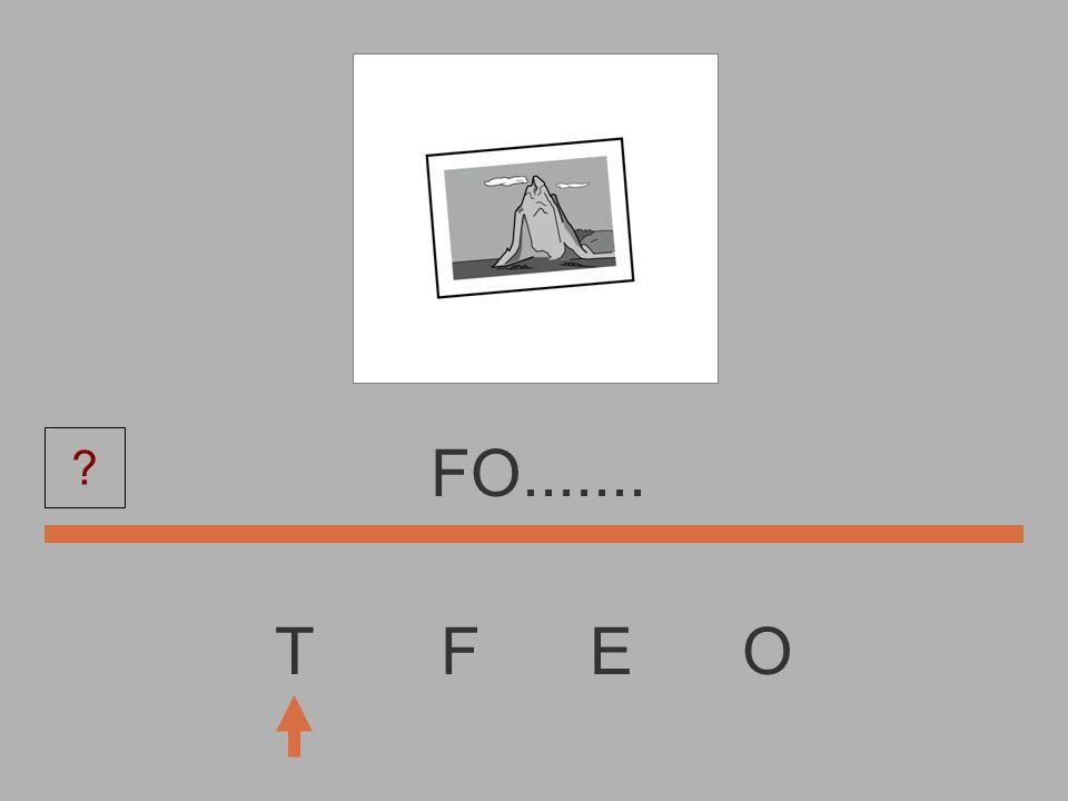 T F E O F..........