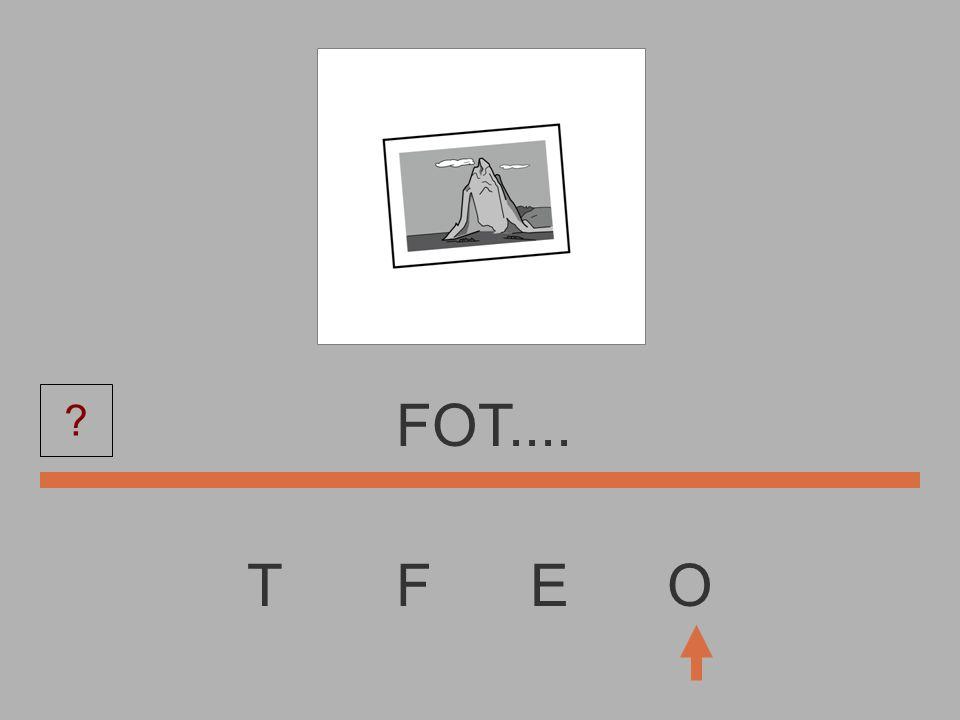 T F E O FO....... ?