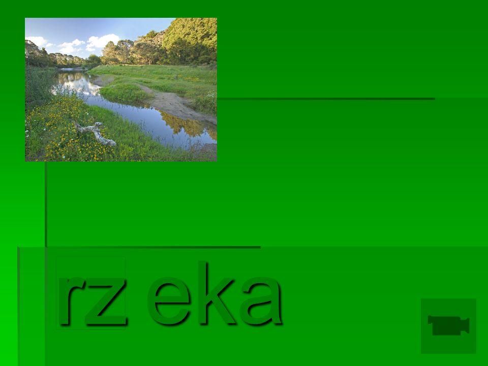 eka eka rz