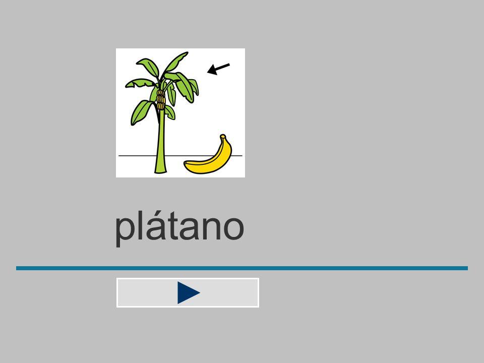 plátan b n o a á p t l ? plátano