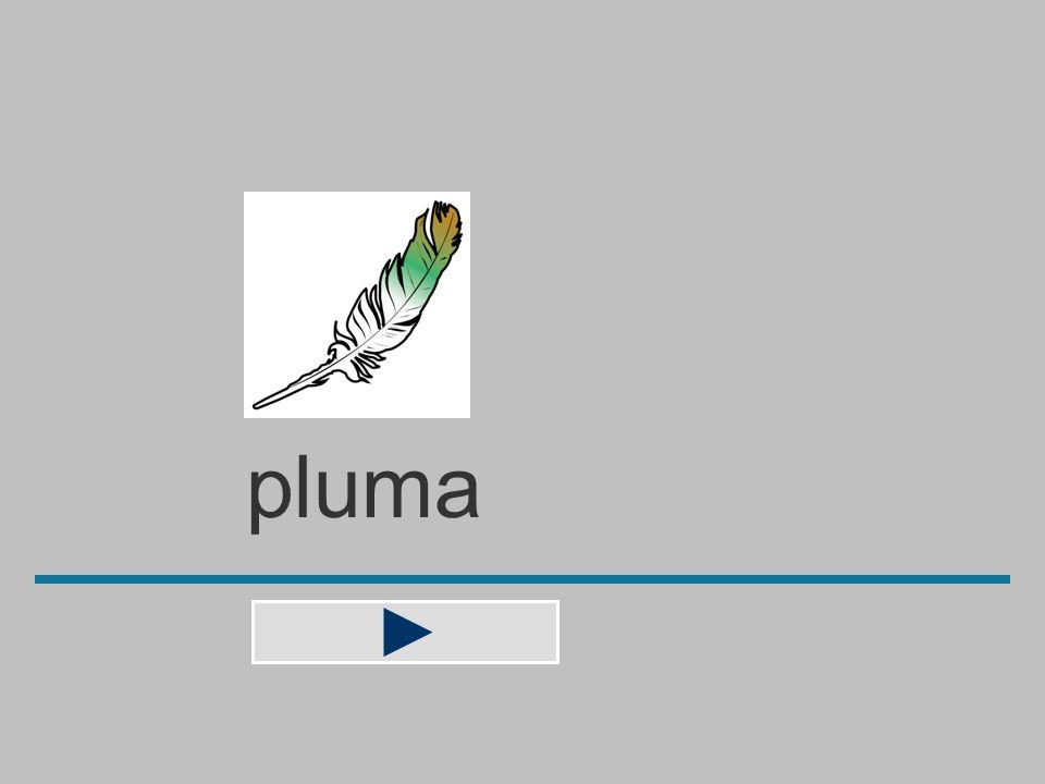 plum a m b p u l n ? pluma