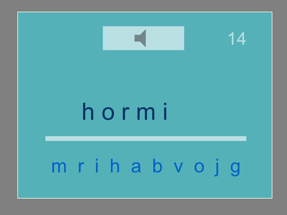 h o r m i g a m r i h a b v o j g 14